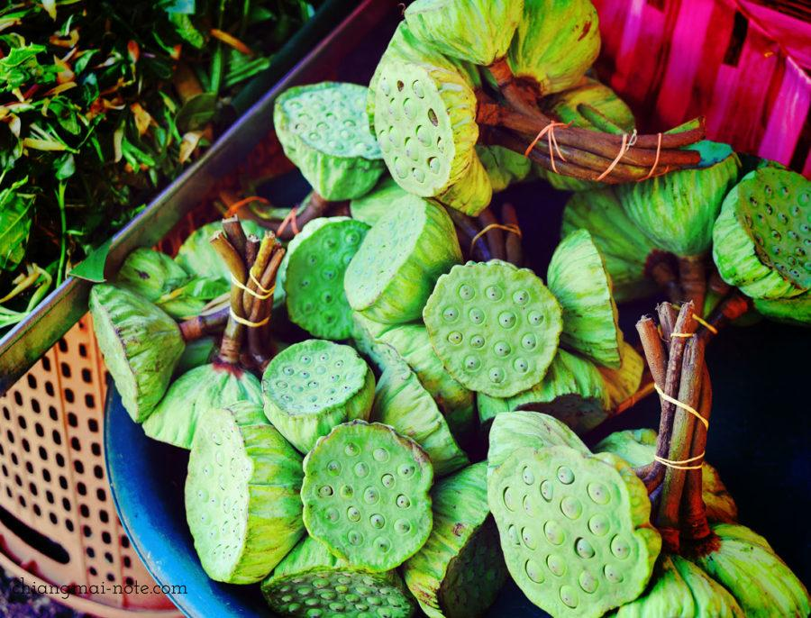 チェンマイの市場で蓮の実が売られている様子。食用の生の蓮の実。 【ショッピング】漢方でも重宝される蓮の実スナックがお土産にお勧めだよ