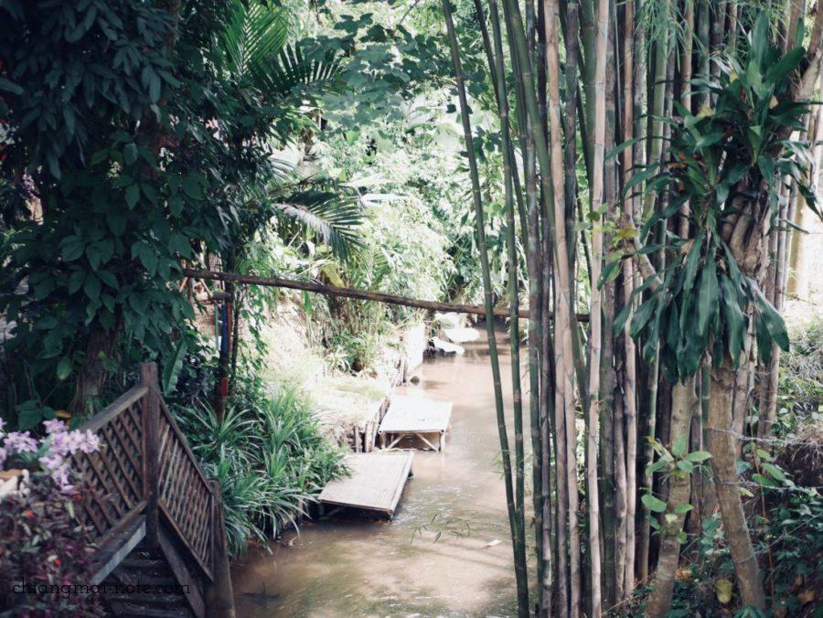 Lhongkhao Tummuan チェンマイの古民家レストラン 竹林に囲まれている