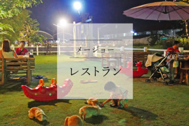 【ファミリー向け】うさぎいっぱいのファームレストランは子ども連れでいっぱい|Fin Farm