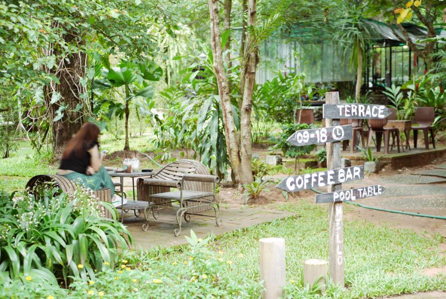 チェンマイカフェ巡り|森のカフェ