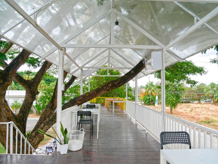 チェンマイカフェ巡り|大樹のふもとのアジトみたいなコンテナカフェ