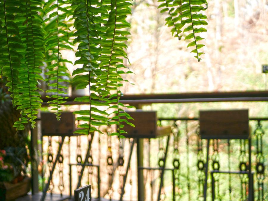 チェンマイカフェ巡り|緑の中でゆっくりブレイクタイム