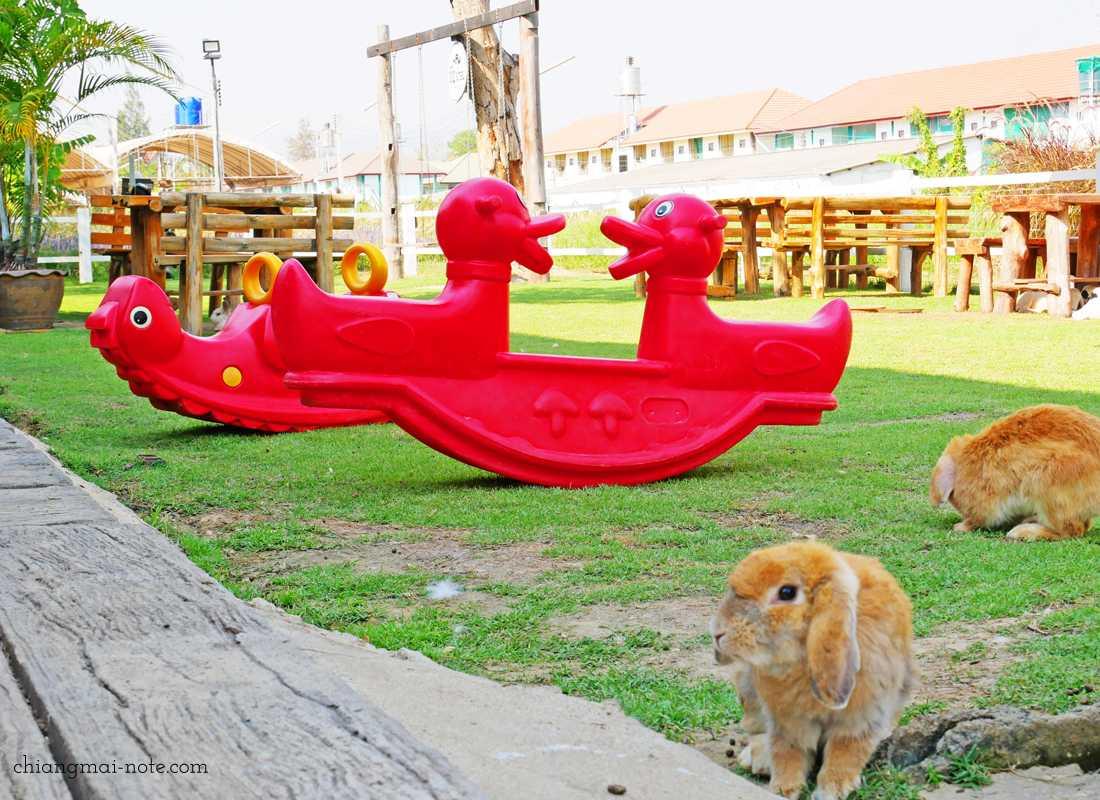 お子さまと楽しむ【チェンマイ観光とカフェ巡り】